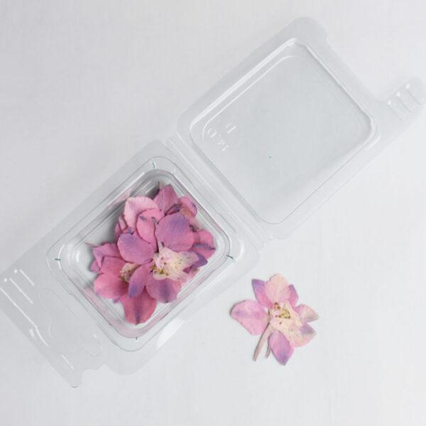 Fiori secchi Fiorellini Rosa
