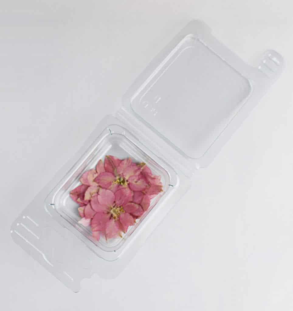 Fiori secchi Fiorellini Rosa Cipria
