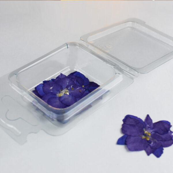 Fiori secchi Fiorellini Viola