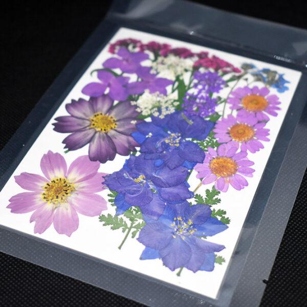 """Bouquet """"Viola"""" 9 tipi di fiori pressati"""