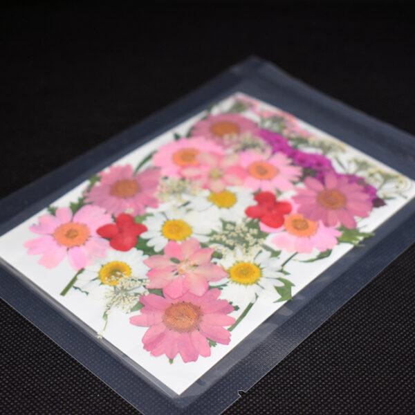 "Bouquet ""Rosa"" 9 tipi di fiori pressati"