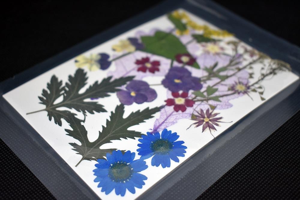 """Bouquet """"Multicolor"""" 9 tipi di fiori pressati"""