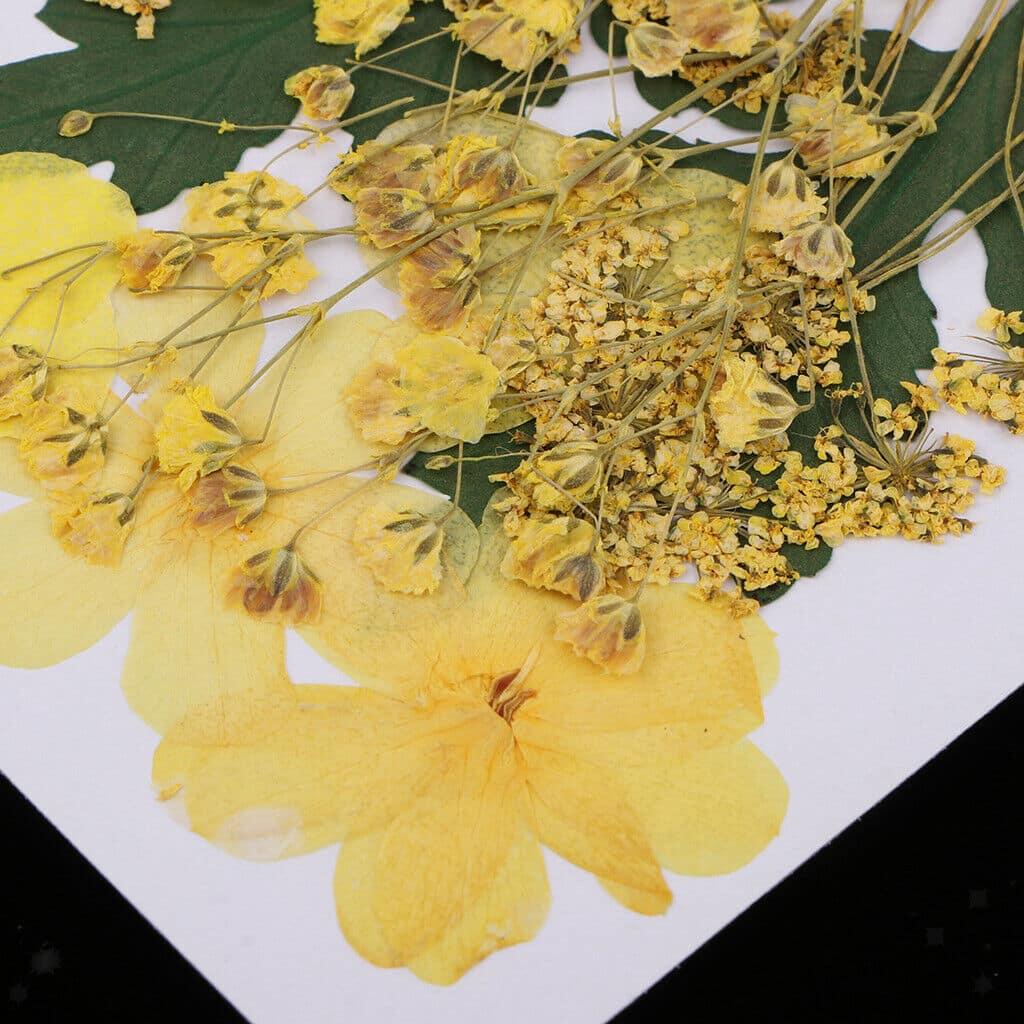 """Bouquet """"Giallo"""" 9 tipi di fiori pressati"""